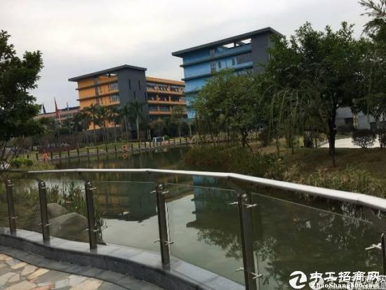 深圳市孵化器  龙岗大道边270-500平  办公室出租图片1