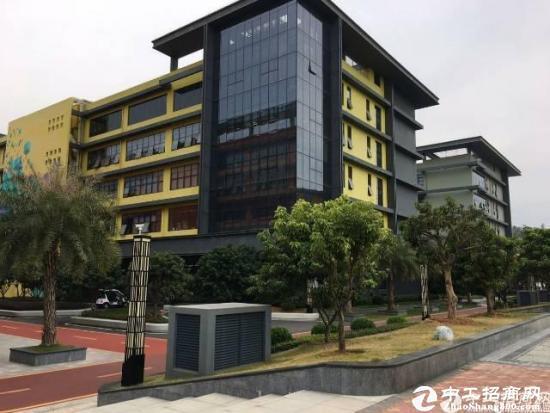 深圳市孵化器  龙岗大道边270-500平  办公室出租图片4
