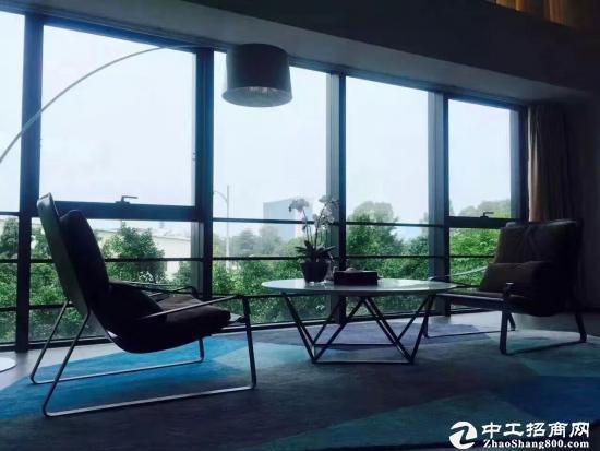 深圳市孵化器  龙岗大道边270-500平  办公室出租图片3