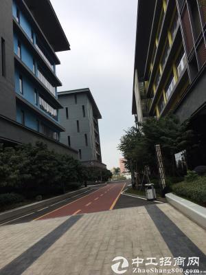 深圳市孵化器五和大道边270-500平办公室出租