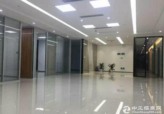 出租写字楼 龙岗中心城精装 245至2000平直租图片5