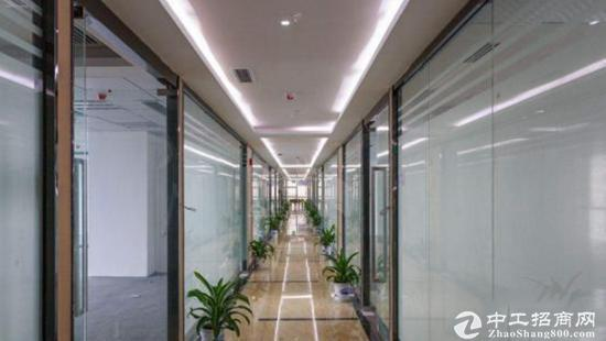 出租写字楼 龙岗中心城精装 245至2000平直租图片2