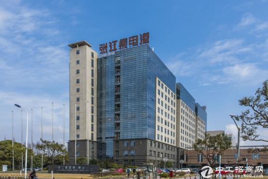 张江高科技园区张江集电港张江小面积办公室出租