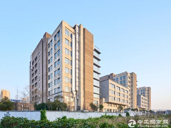 秋月路26号张江高科技园区办公室出租可租面积50到500平