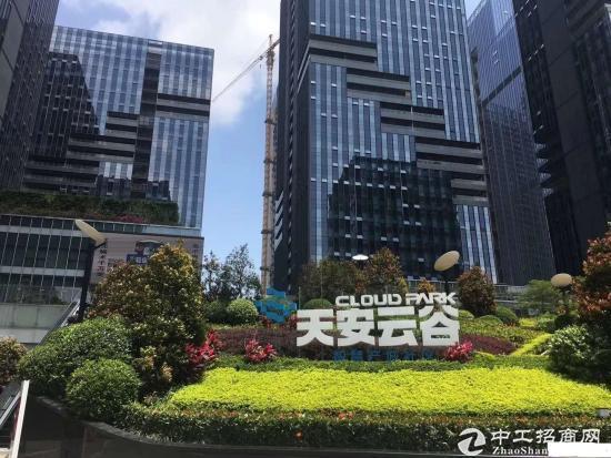 坂田地铁站附近 天安云谷 768平 红本物业写字楼出租图片4