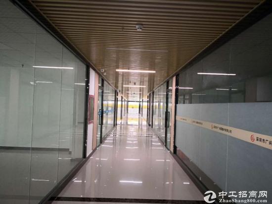 龙岗中心城写字楼办公150平出租价格35每平带【观光电梯】图片2