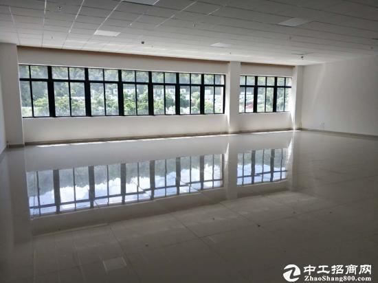 龙岗 横岗全新精装修小户型50平至750平写字楼出租