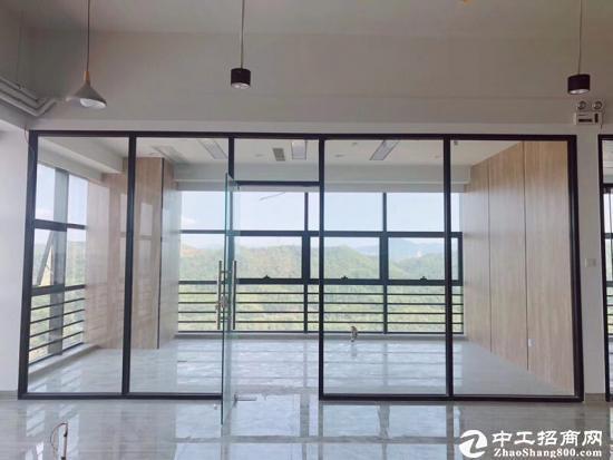 石岩白芒关口30000平米甲级写字楼100平米起租图片5