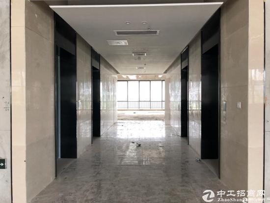 南山西丽写字楼30000平火爆招租(100平起分
