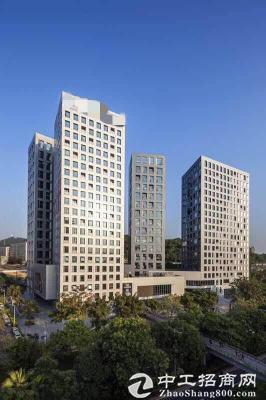 深圳湾科技生态园三期独栋5a写字楼大小型办公室办公