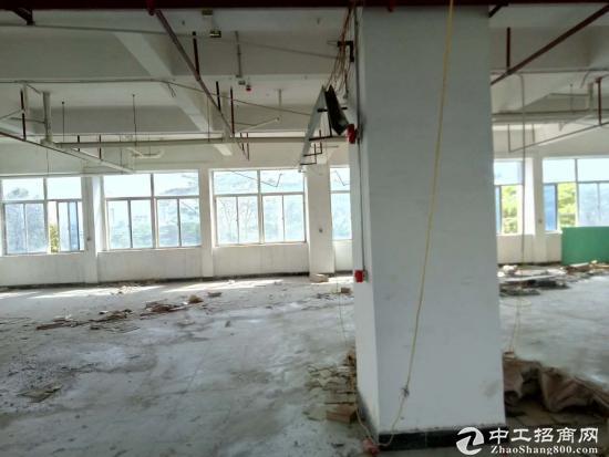 坪山大工业区全新写字楼2万平可接受定制,100平起分
