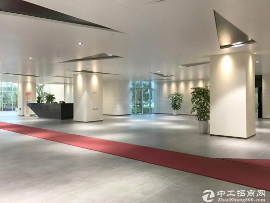 张江中环广场,盛大天地160平精装修带家具,房型正气朝南
