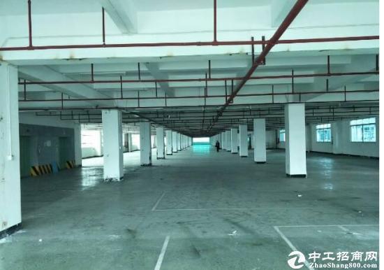 西丽白芒超大型产业园500~5000大小面积出租
