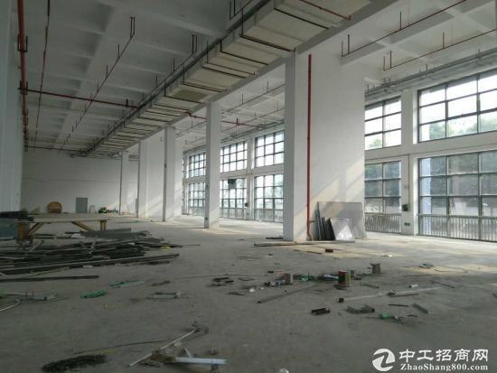 张江药谷高科中路1200平米医药化学实验场地