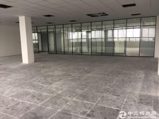 赠免租!110平朝阳落地窗,高架口停车全免!