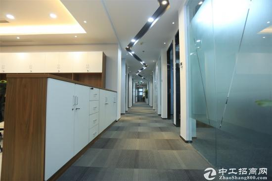 全新豪华、高端办公间,免杂费