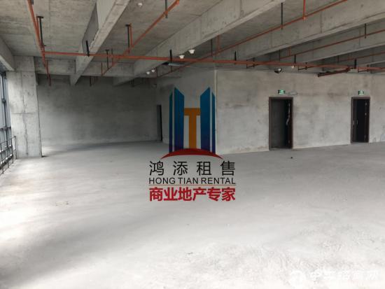 绿地中央广场 纯写字楼 整层招租 地铁口物业