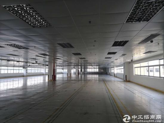 萝岗科学城1楼1600方精装