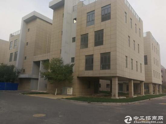 EOD总部港  600-1500平米生态企业独栋别墅