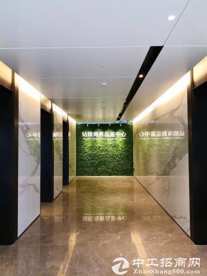 喜之郎中心 开发商直租 1400平米 无敌海景 使用率高