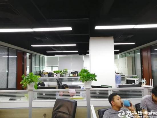 南山西丽大学城南山云谷500平精装写字楼出租图片2