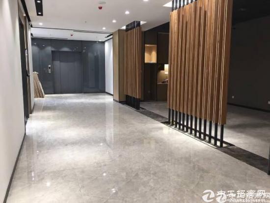 石岩中心新出大型写字楼招租图片3