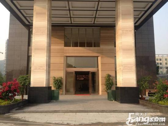 西乡开发商甲级写字楼20000平米大小分租
