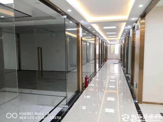 西丽旺棠地铁口红本带精装修写字楼招租320平