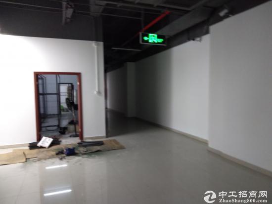 布吉爱义商务中心25平米精装修