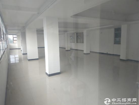 坂田坂田第三工业区600平米
