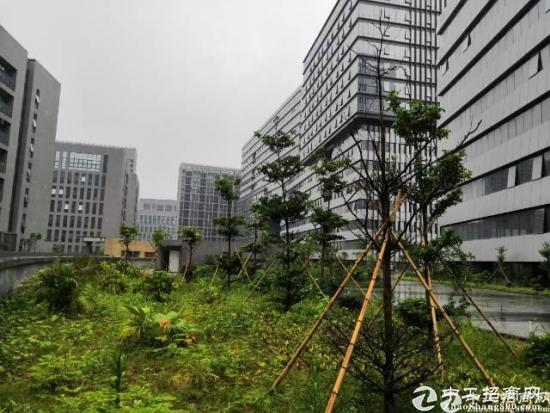 高新园区,写字楼和厂房5800招租(可分租)