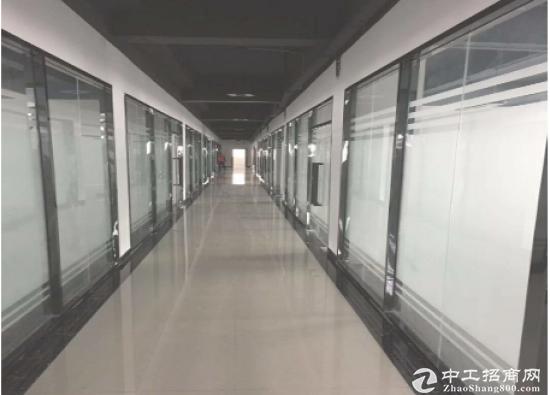 坂田五和地铁口园中园精装办公室,60平起租苏式园林环境