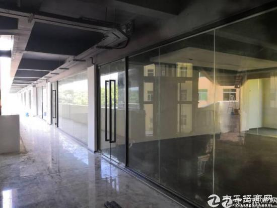 石岩红本高新产业园招租 200平方起分租