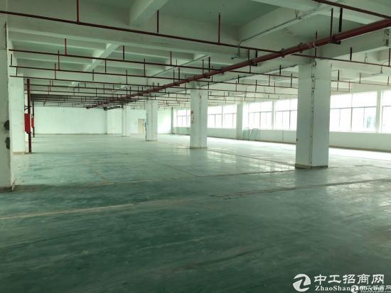 西丽白芒关口附近高端工业园区楼上2500平方出租