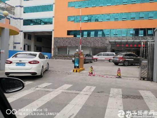 深圳南山西丽松白路边精装产业园2.1万平35元起租