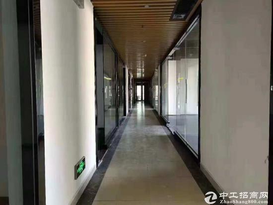 坂田杨美地铁口400米写字楼65平起租