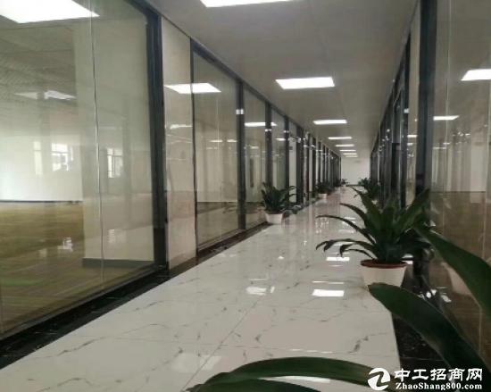石岩塘头写字楼100/150/300平招租,大小可分,办公,