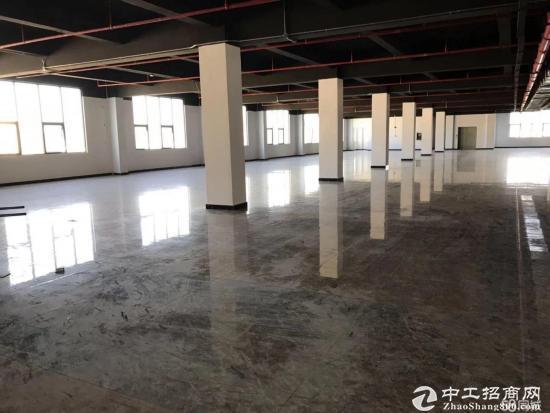 木棉湾新出红本写字楼1200平米35元一平米大小分租
