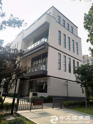 红岛高新区企业办公花园式独栋招商 买四层得六层 5.6米层高
