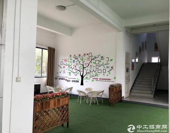 光谷4800平米高品质办公研发楼,6栋别墅级办公场地