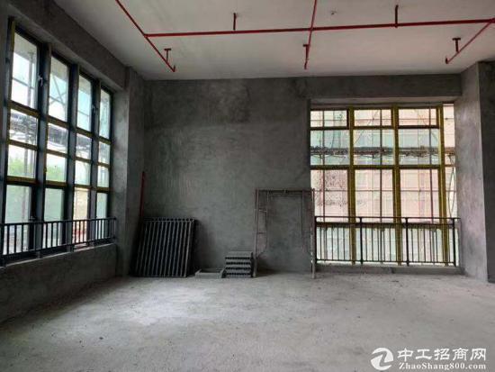 宝安松岗双高速出口开发商独立红本50年产权写字楼200平起首付三成