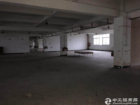 大运地铁站附近新出一楼500平办公室出租