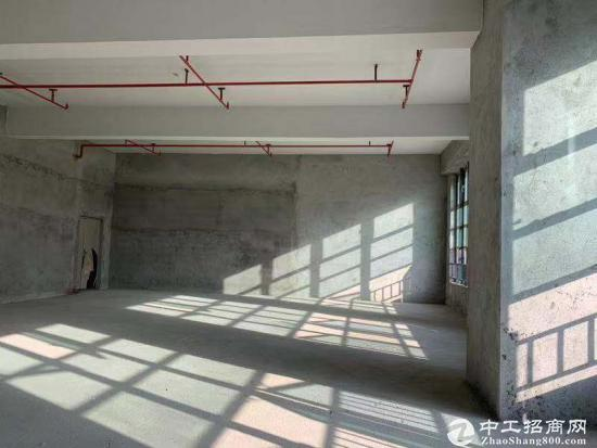 松岗双高速出口开发商独立红本写字楼50年产权首付三成全新