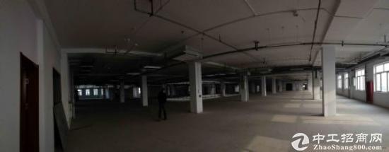 自贸区保税区全新业态综合楼宇项目租售1