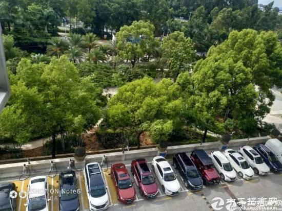 观澜镇高速出口精装修70平写字楼出租 可注册 国家级孵化空间