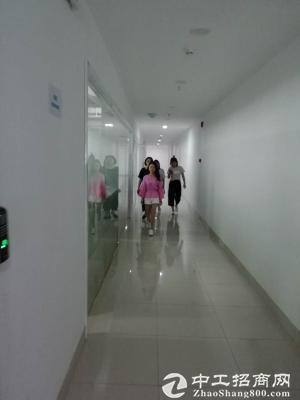 浦东金桥自贸区9号线地铁口成熟园区半层带装修图片4