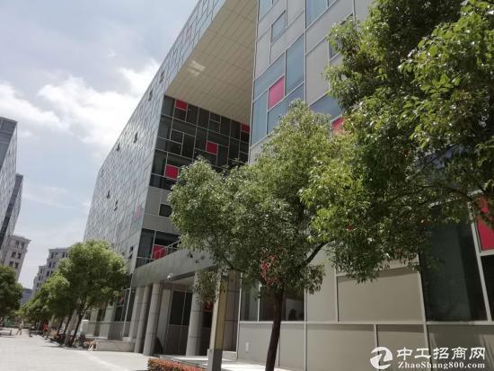 浦东金桥自贸区9号线地铁口成熟园区半层带装修图片3