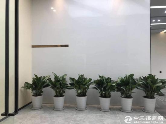 《汇通新长江》520平精装带家具,一线江景,拎包入住。图片1