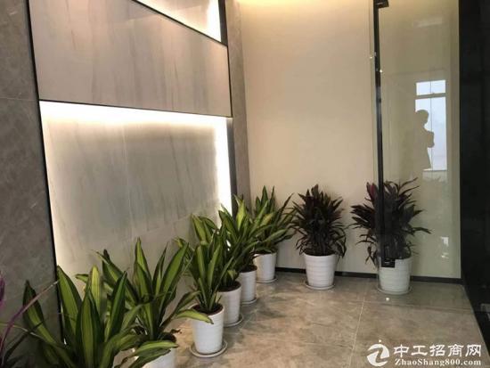 《汇通新长江》520平精装带家具,一线江景,拎包入住。图片2