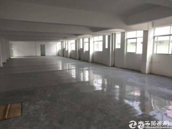 横岗地铁站附近新空出办公室500平